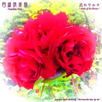 の ワルツ 花